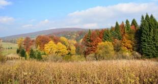rajd jesienny